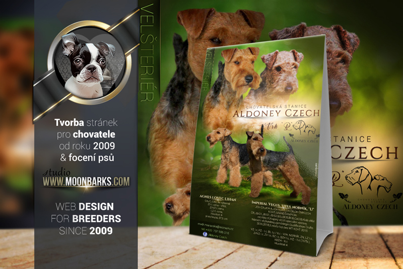 Litter Announcement - kennel mating flyer, puppies litter announcement graphics, letáčky na ště�átka