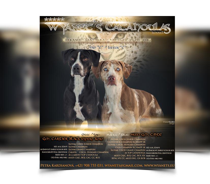 breeder webdesign dog kennel design best dog breeder