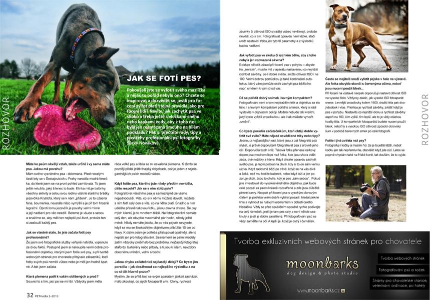 Profesionální fotograf psů focení psů Praha, fotograf ateliér Praha