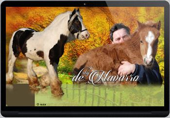 Webdesign pro chovatele